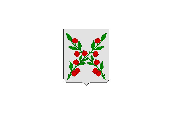 Чаплыгин: герб. Чаплыгин - заказать такси
