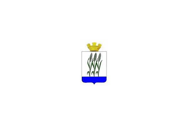 Камышин: герб. Камышин - заказать такси