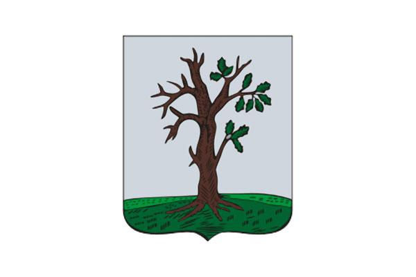 Стародуб: герб. Стародуб - заказать такси