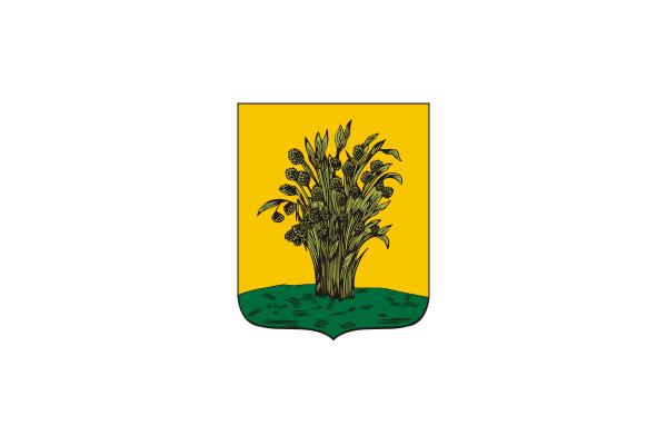 Сураж: герб. Сураж - заказать такси
